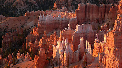 Bryce Canyon National Park, Utah © Roland Aellig